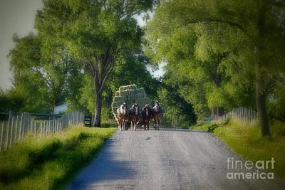 Amish Photograph - Hay Wagon by David Arment