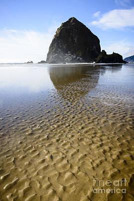 Bird Photograph - Haystack Rock At Cannon Beach by Oscar Gutierrez