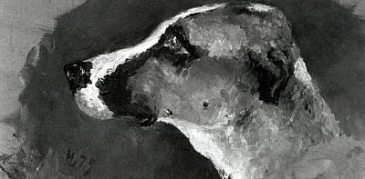 Dog Drawing - Head Of A Dog With Short Ears by Henri de Toulouse-Lautrec