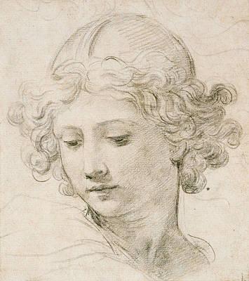 Head Of An Angel Print by Pietro da Cortona