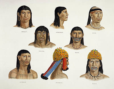 Heads Of South American Indians Print by German School