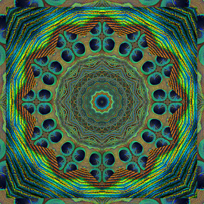 Peacock Photograph - Healing Mandala 19 by Bell And Todd
