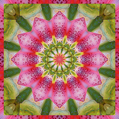 Stargazer Lilies Photograph - Healing Mandala 25 by Bell And Todd