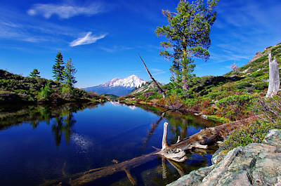 Photograph - Heart Lake And Mt Shasta Reflection by Scott McGuire