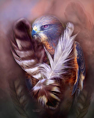 Hawks Mixed Media - Heart Of A Hawk by Carol Cavalaris