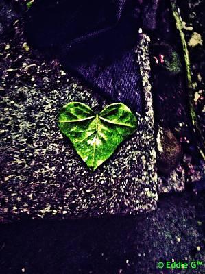 Manipulation Photograph - Heart Of Leaf by Eddie G