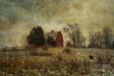 Heart Of The Farm Print by Terry Rowe