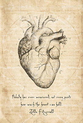 Conceptual Art Drawing - Heart Quote By Zelda Fitzgerald by Taylan Apukovska