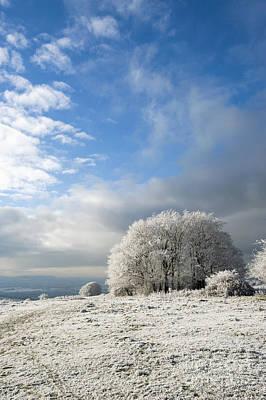 Heavy Frost Print by Anne Gilbert