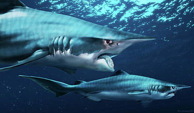 Spiral Photograph - Helicoprion Prehistoric Shark by Jaime Chirinos