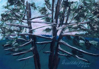 Hemlocks Snowy Morning Print by Bernadette Kazmarski