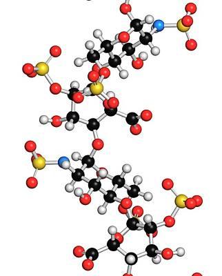 Polymer Photograph - Heparin Anticoagulant Drug Molecule by Molekuul