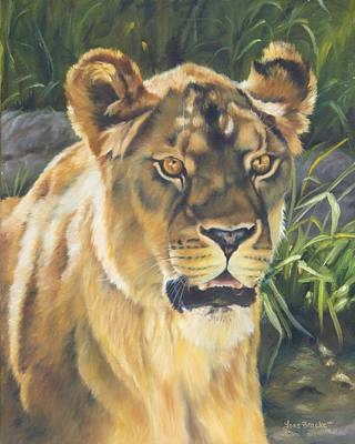 Cat Painting - Her - Lioness by Lori Brackett