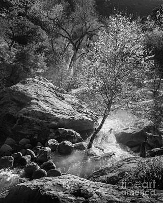Sycamore Canyon Photograph - Her Overflowing Heart by Alexander Kunz