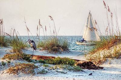 Sand Fences Digital Art - Heron And Sailboat Larger Sizes by Michael Thomas