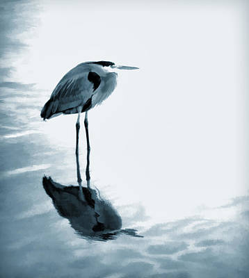 Heron In The Shallows Print by Carol Leigh