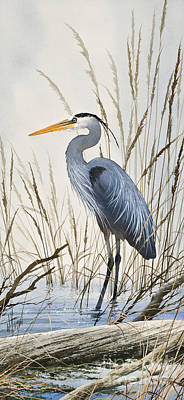 Herons Natural World Original by James Williamson