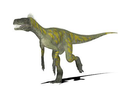 Herrerasaurus Dinosaur Print by Friedrich Saurer