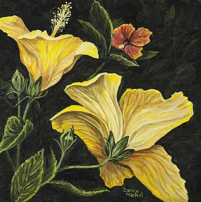 Hibiscus 2 Print by Darice Machel McGuire