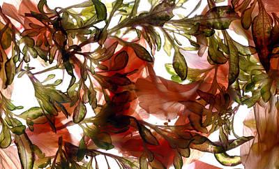 Peaches Digital Art - Hibiscus Coleus Array by Julia McLemore