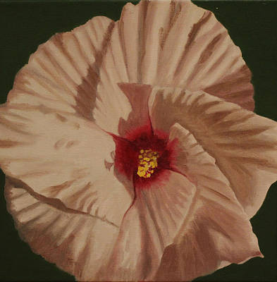 Rose Of Sharon Painting - Hibiscus - Rose Of Sharon by Donna Greenstein
