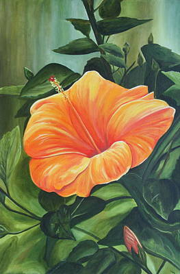 Tangerine Painting - Hibiscus - Tangerine by Lyndsey Hatchwell