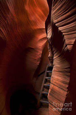 Canyon Photograph - Hidden Stairs by Mike  Dawson