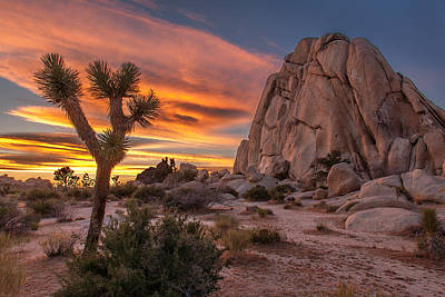 Hidden Valley Rock - Joshua Tree Print by Peter Tellone