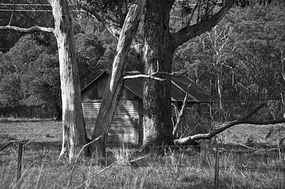 Photograph - Hideaway by Marty  Cobcroft