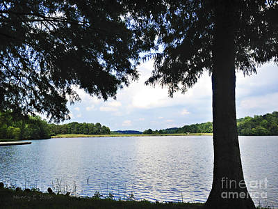 Stein Photograph - Higgins Lake In The Summer by Nancy E Stein