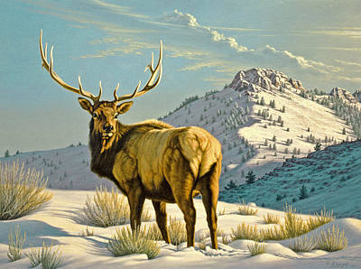 Elk Painting - High Country Bull by Paul Krapf