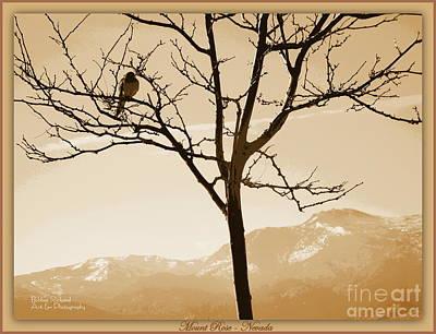 High Sierra Digital Art - High Desert Treasure by Bobbee Rickard