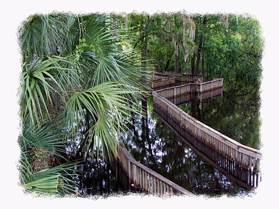 Highwater Reflection Print by Sheri McLeroy