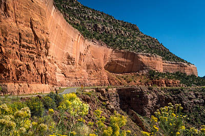 Colorado Photograph - Highway 141 by Michael J Bauer