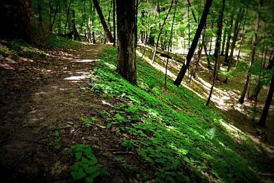 Forest Floor Photograph - Hiking The Ridge by Michelle Calkins