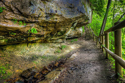Kentucky Photograph - Hiking Trail by Alexey Stiop