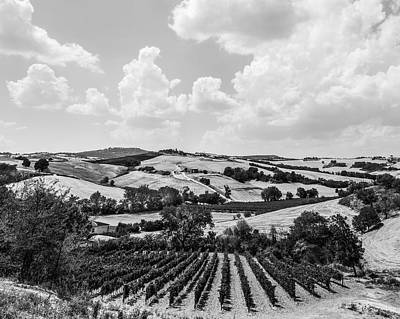 Photograph - Hills Of Tuscany by Clint Brewer