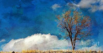 Las Cruces Digital Art - Hilltop Tree by Barbara Chichester
