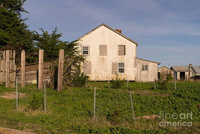 Contemplative Photograph - Historic D Ranch In Point Reyes California Dsc2381 by Wingsdomain Art and Photography