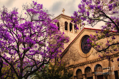 Historic Sierra Madre Congregational Church Among The Purple Jacaranda Trees  Print by Jerry Cowart