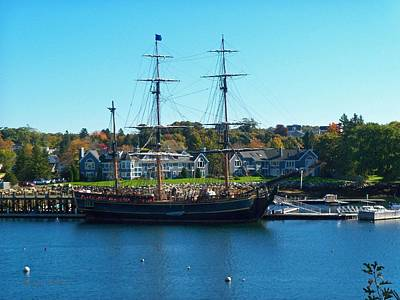 Maine Bounty Photograph - Hms Bounty Tied Down by Nancy  Pillers