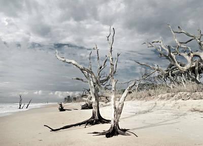 Hobcaw Boneyard Beach 2 Print by Deborah Smith