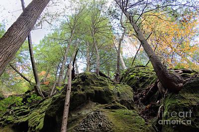 Hocking Hills Moss Covered Cliff Print by Karen Adams