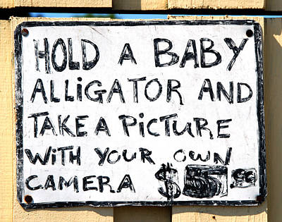 Hold A Baby Alligator Print by Ron Regalado