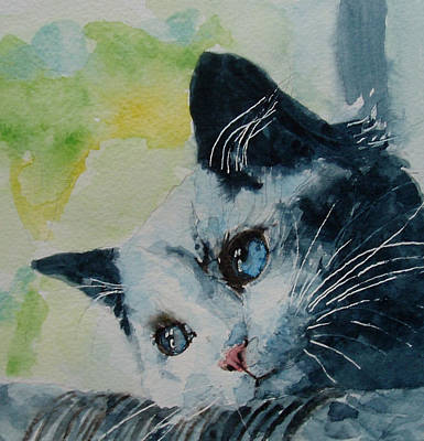 Cat Images Painting - Hold Me Closer Tiny Dancer by Paul Lovering