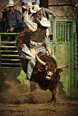 Bull Riders Photograph - Hold On by Priscilla Burgers