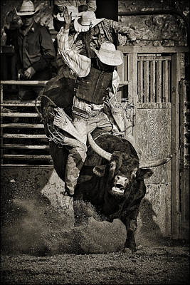 Bull Riders Photograph - Hold On-sepia by Priscilla Burgers