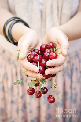 Red Fruit Photograph - Holding Cherries  by Viktor Pravdica