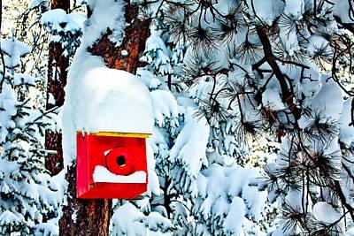 Holiday Birdhouse Original by Teri Virbickis