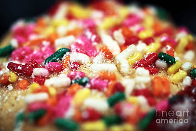 Holiday Cookie Print by John Rizzuto